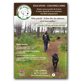 Flyer pour Linc School Coaching canin